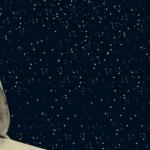 Per quel cammino ascoso: Dantedì 2021 – 24-25 marzo 2021