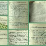 Letteratura Ragione Represso. L'eredità critica di Francesco Orlando – 6-8 maggio